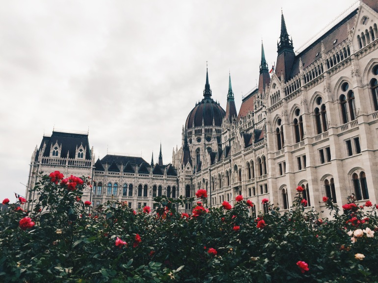 Parliament + roses