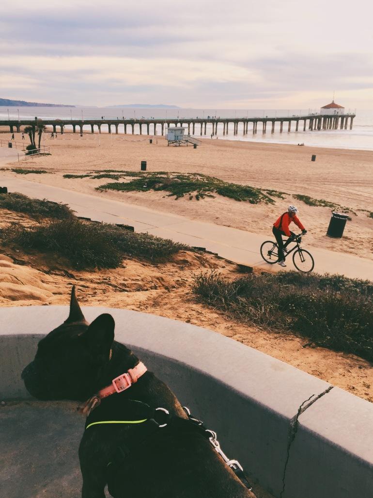 MB Pier + strand