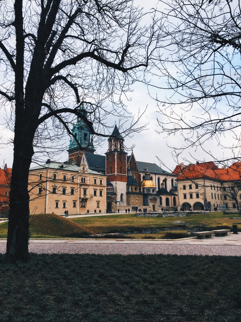 Wawel from afar-ish