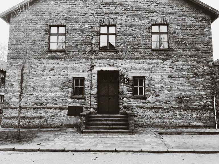 Auschwitz 10