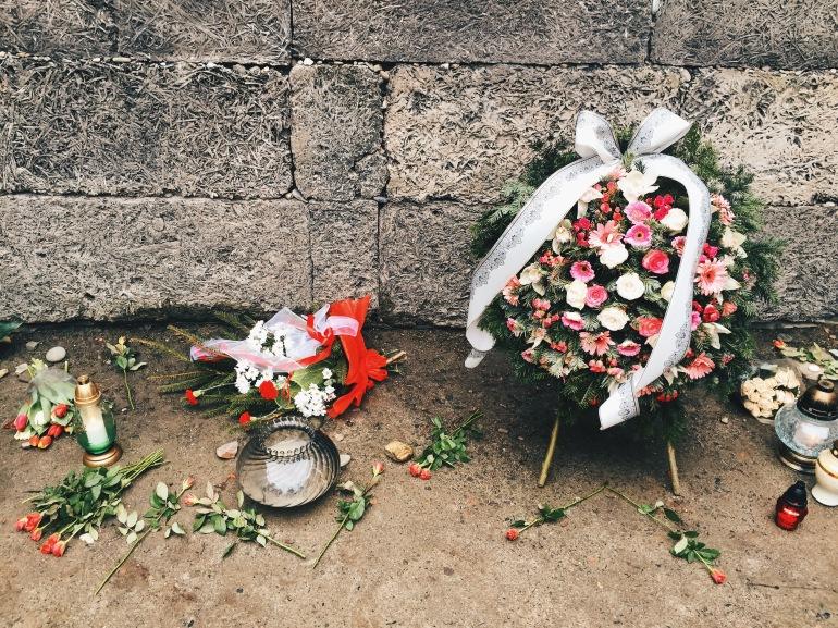 Auschwitz flowers