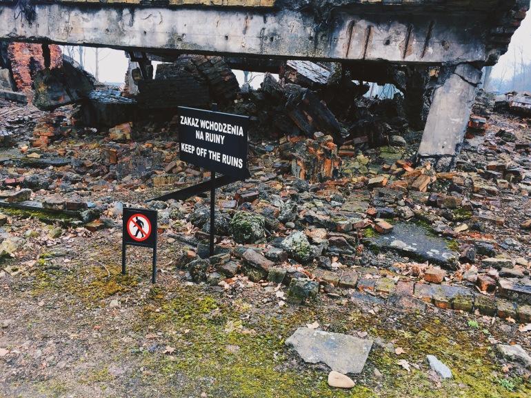 Auschwitz-Birkenau - ruins