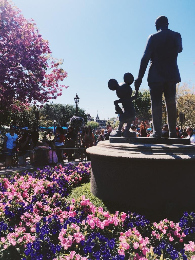 Disneyland hub
