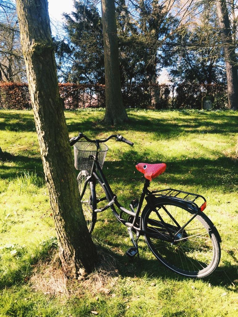 Bispebjerg solo bike