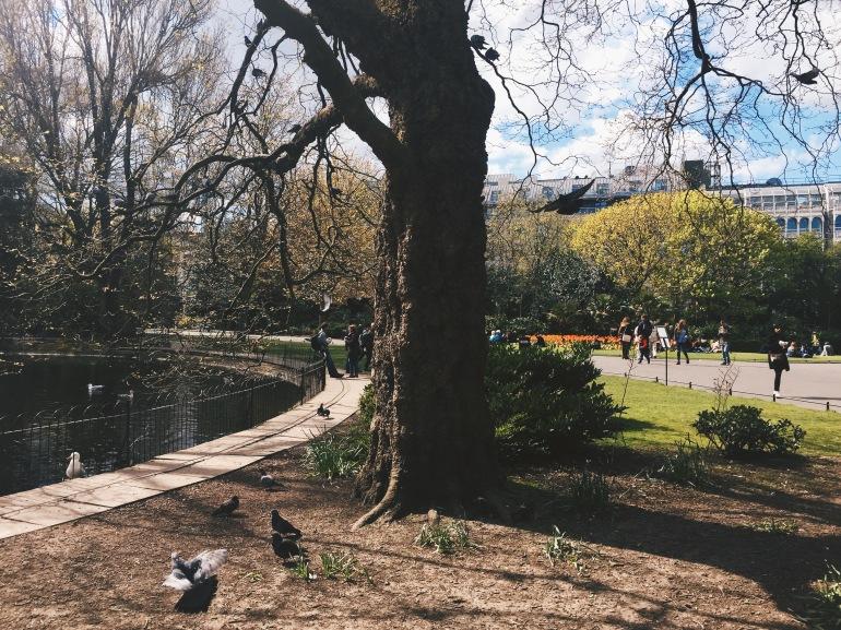 Touristing - St. Stephen's Green