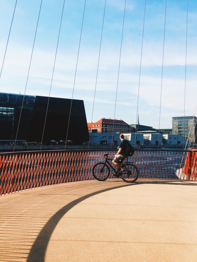 Summertime - Circle Bridge