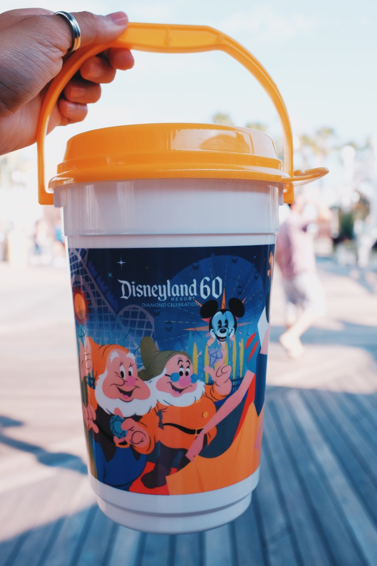 disneyland bucket
