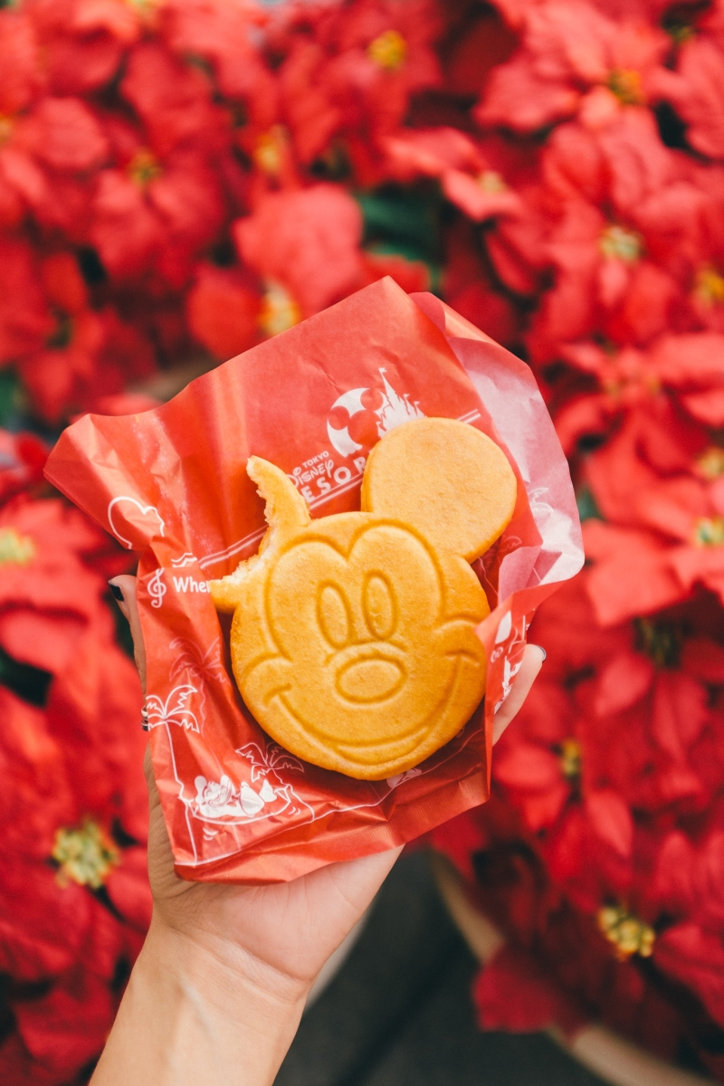 Snacking our way through Tokyo DisneySea