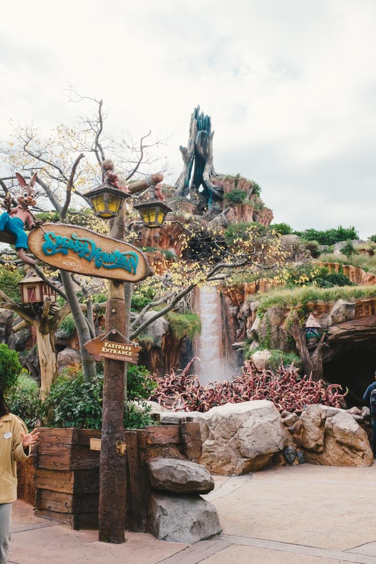 Tokyo Disneyland Splash