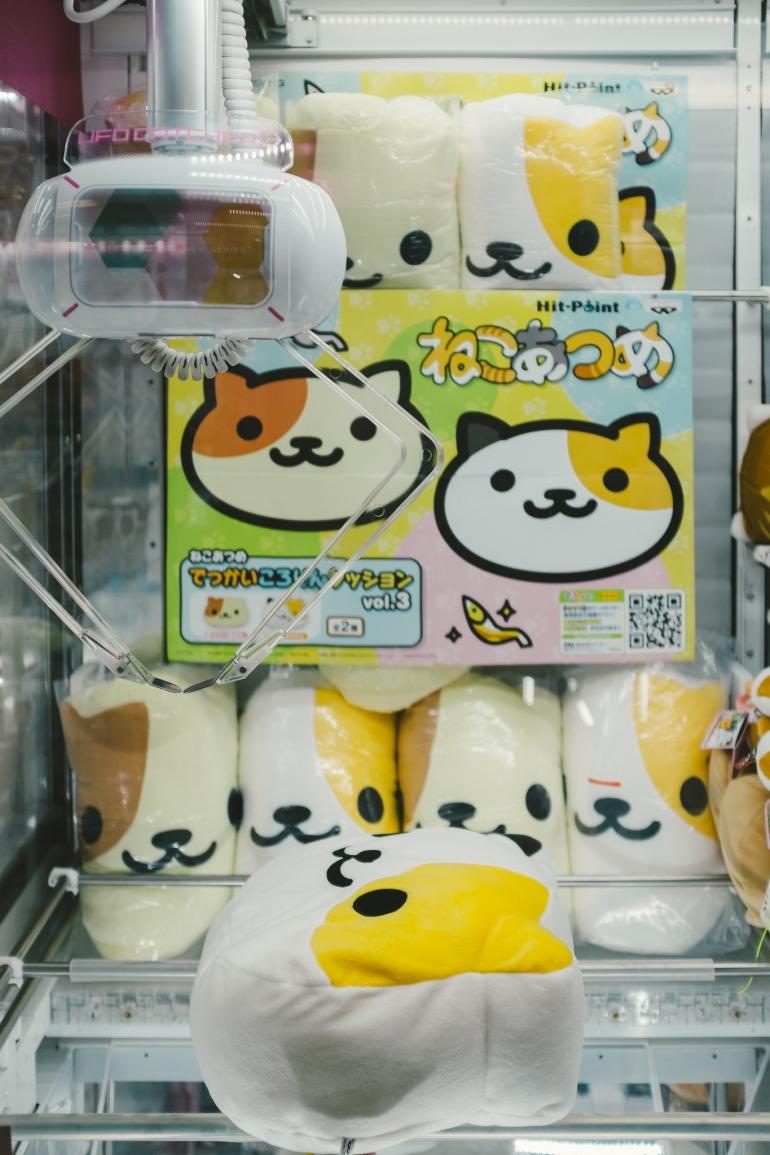 Akihabara claw game