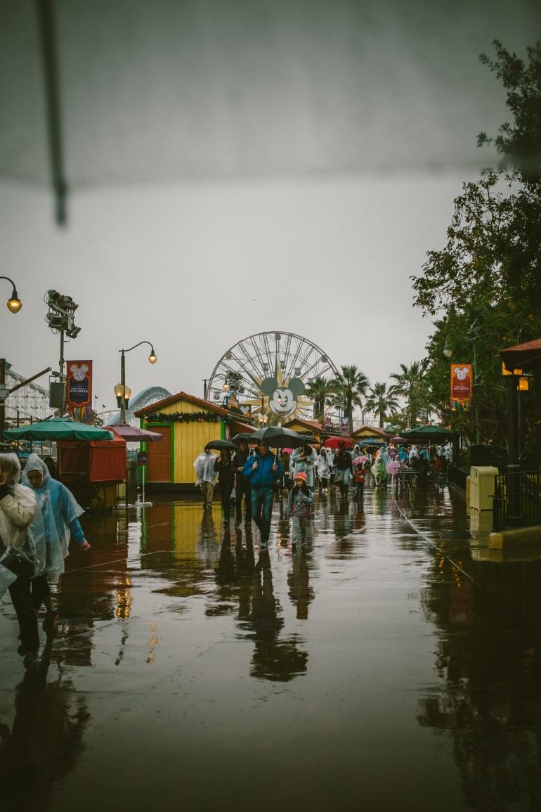 RainyDCA