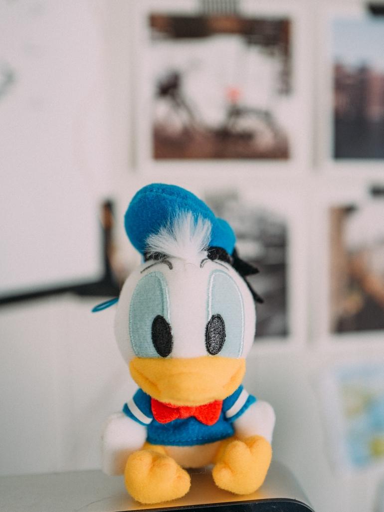 Tokyo Disney Merch Haul
